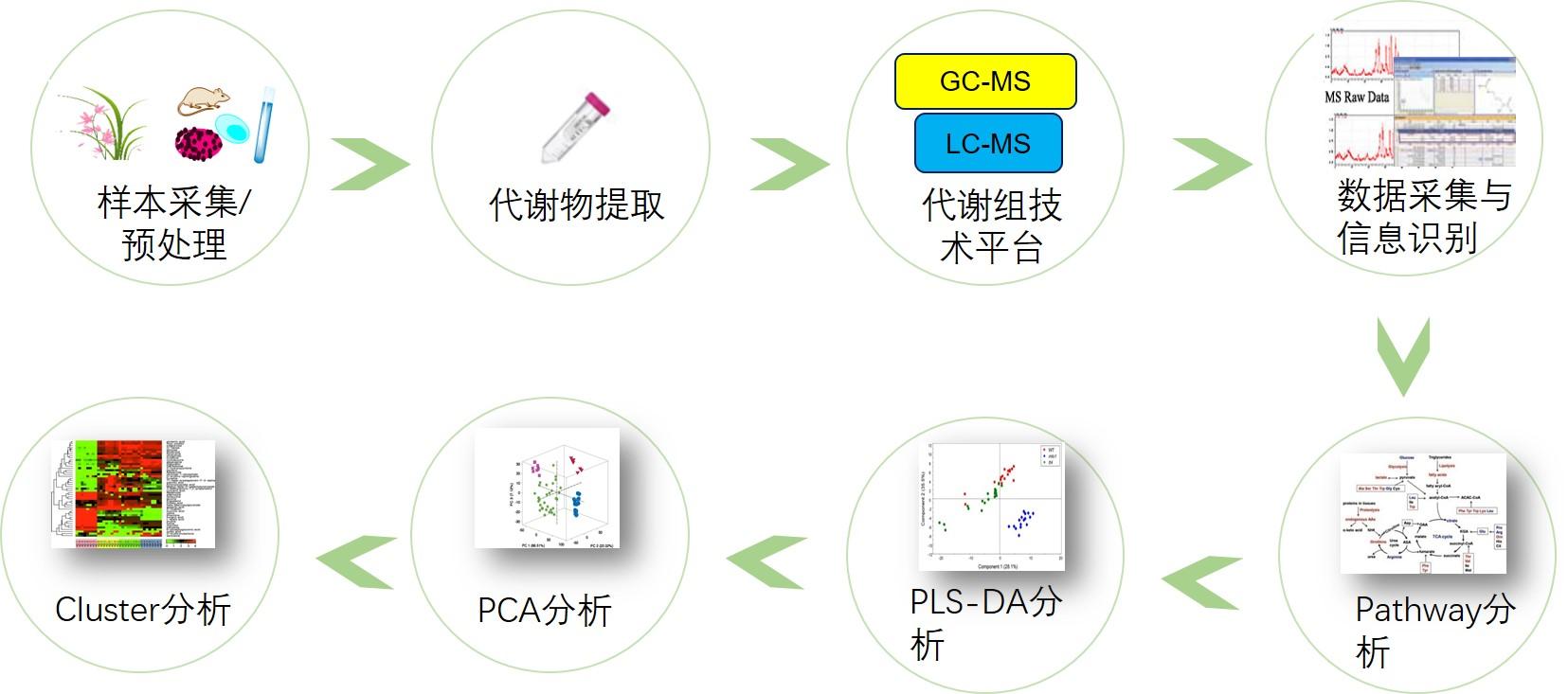 非靶向代谢组学