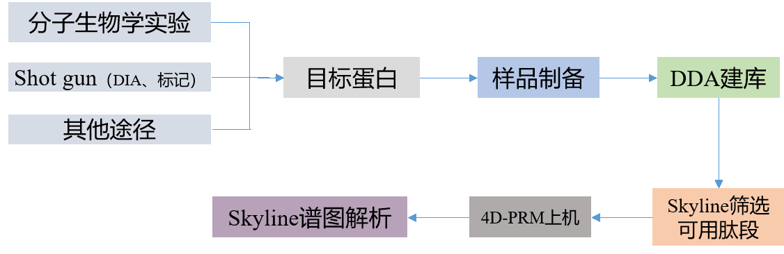 4D-PRM蛋白组学