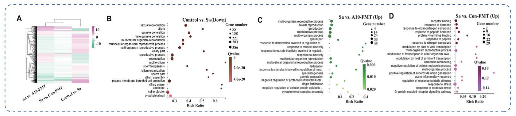 16s微生物测序+全谱代谢组双平台