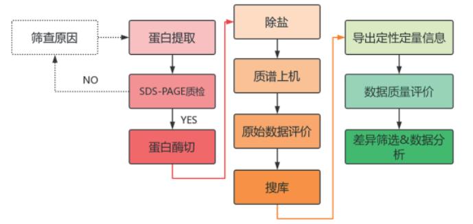 4D-label free蛋白组学